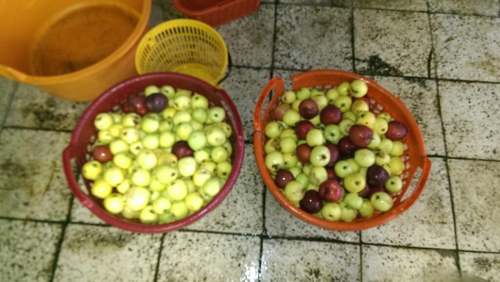 Jablka v koši