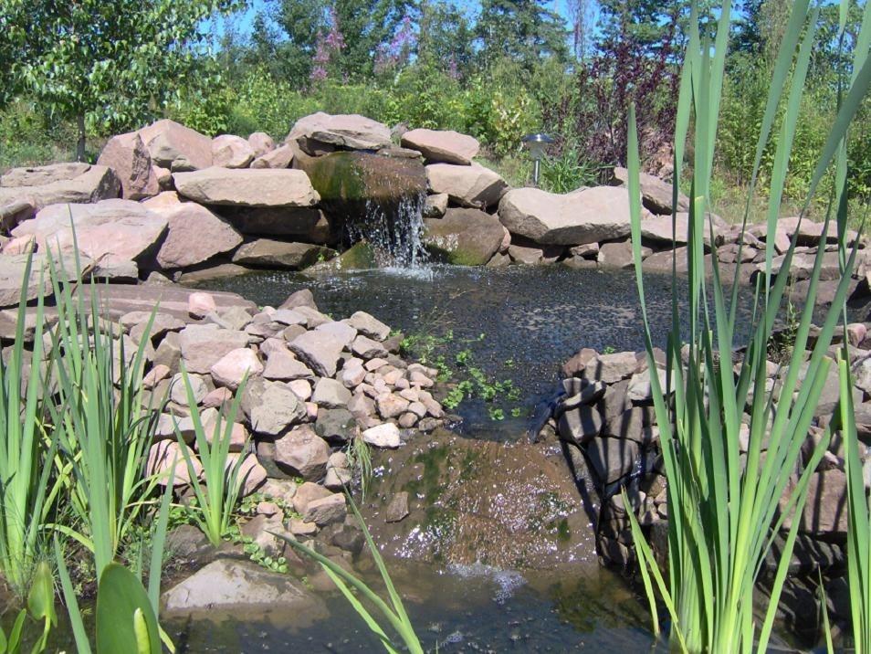 Postavte Si Zahradní Jezírko Naše Zahrada