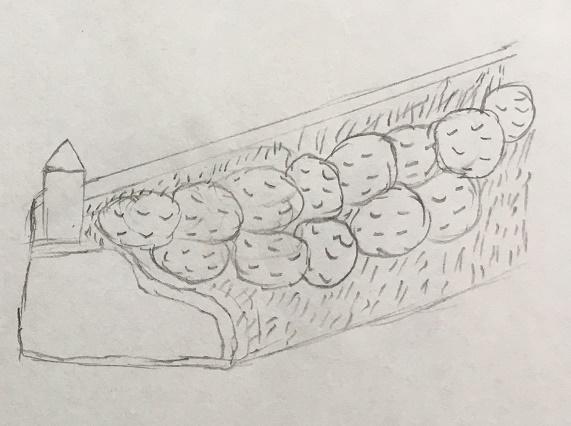 Uložení brambor v přepravce
