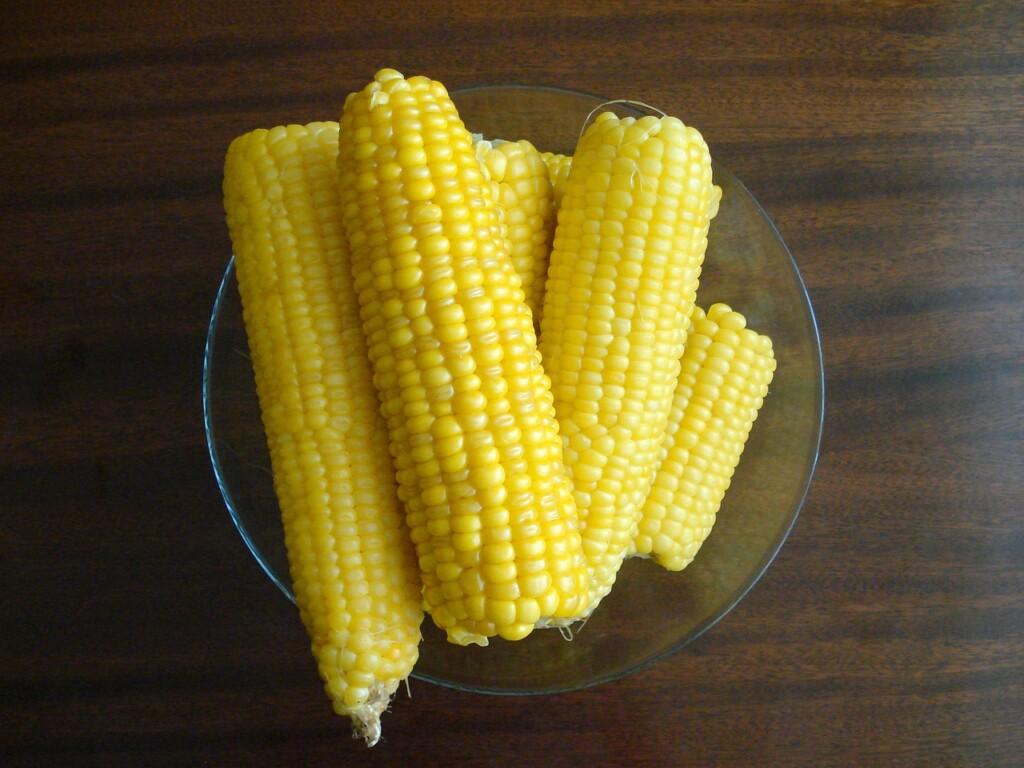 Cukrová kukuřice