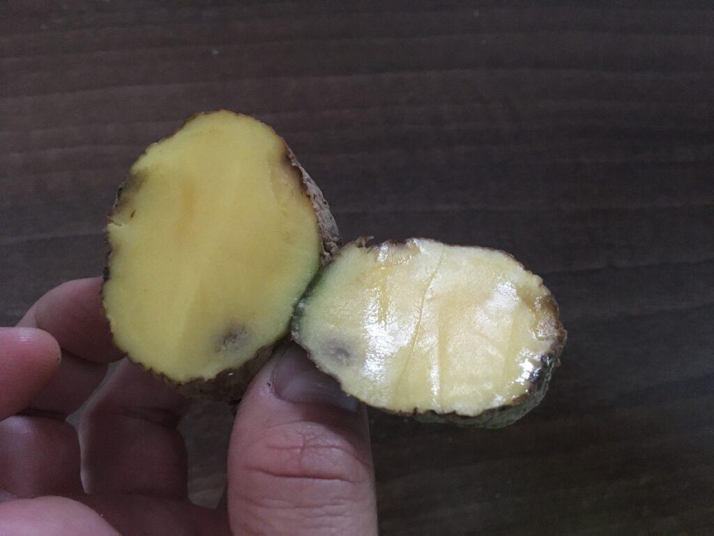 Černé skvrny na bramborách