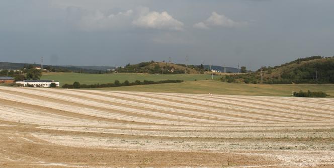 Vápněná pole