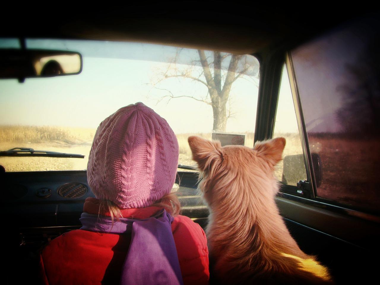 pes a dívka